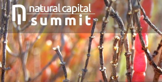 Durante el Natural Capital Summit, responsables empresariales del panorama internacional y nacional expondrán experiencias de éxito sobre la incorporación del capital natural en sus estrategias de negocio como garantía de un crecimiento sostenible.
