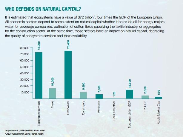 El capital natural sufre un rápido declive al tiempo que los servicios de los ecosistemas se degradan. Esta situación es preocupante, dado el crítico papel que juega el capital natural en términos de contribución al desarrollo económico en general.